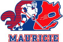 Dévoilement de l'équipe de hockey volet féminin pour les Jeux du Québec !