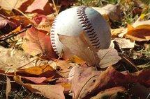 Baseball d'automne - LBAM 2017
