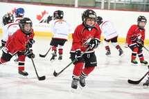Les changements visant à simplifier le système de hockey mineur entreront en vigueur la saison prochaine