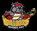 Bulldogs Québec Mixte