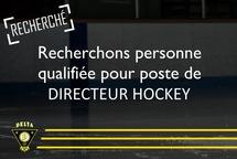 Recherchons directeur hockey