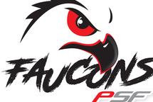Le retour des sports pour les Faucons
