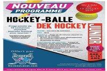 Le nouveau programme Hockey-Balle de l'Académie Hockey Laval,ENCORE DES PLACES DE DISPONILE, LES LUNDIS SOIR FAITES VITES DÉBUT LE 6 MAI