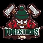 Offre d'emploi pour le poste d'entraîneur-chef des Forestiers