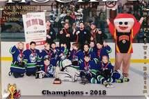 Félicitation aux Grizzlys Kodiak Atomes C, Champion du tournoi de Napierville!