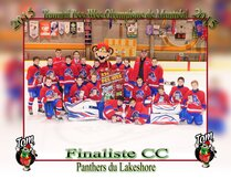 Panthers du Lakeshore