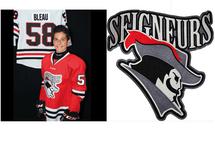 Les joueurs de la semaine (24) Le Trio Hockey dans la LEQ