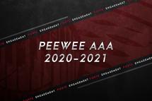 Dévoilement de notre équipe Peewee AAA 2020-2021