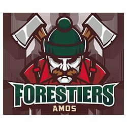 Le site officiel des Forestiers d'Amos - LHMAAAQ