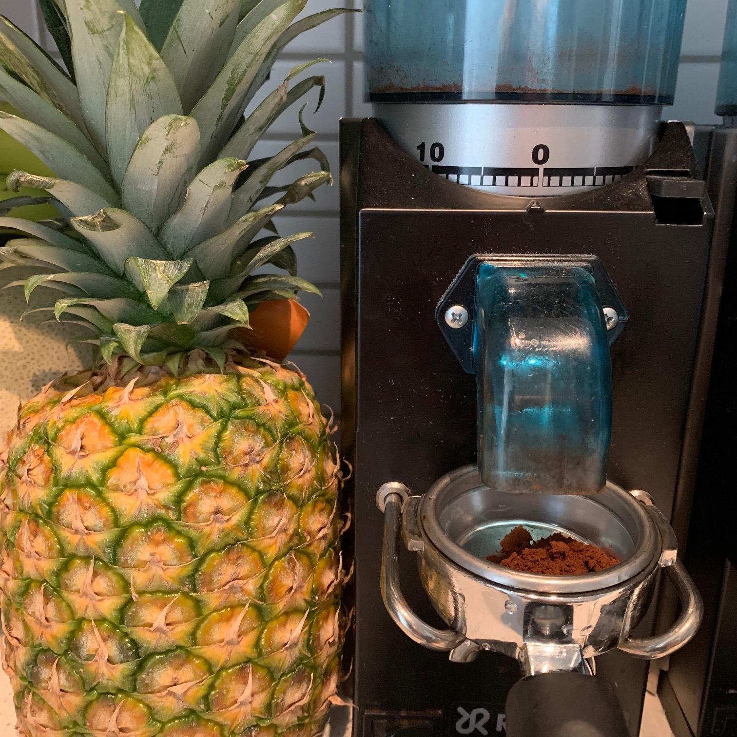 Rancilio grinder, Rancilio rocky, rancilio, coffee grinder