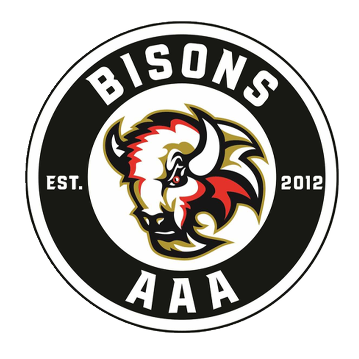 Bisons AAA Logo