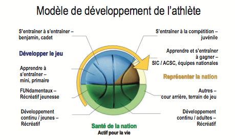 modèle de développement à long terme de l'athlète (DLTA)