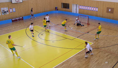 Floorball Rink