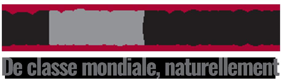 Métaux BlackRock