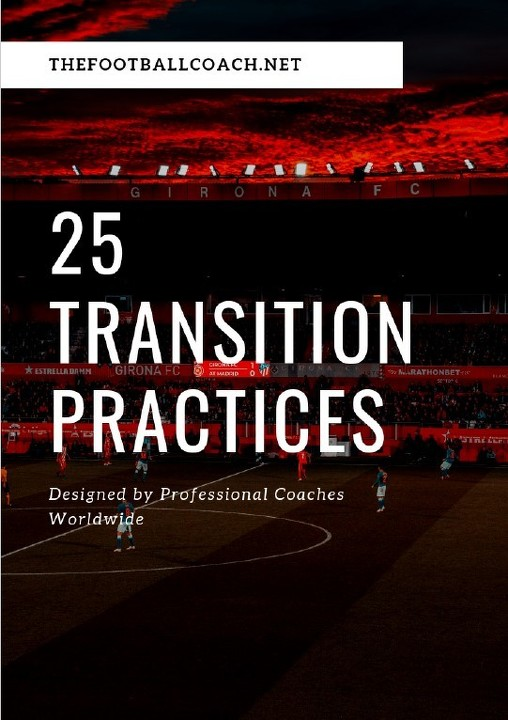 25 Transitional Practices