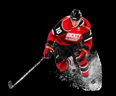rubricHockeyPlayerImg