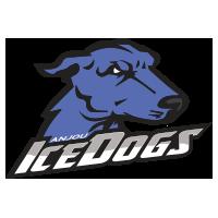 FloorBall Montréal Icedogs