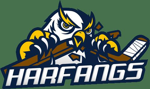 Association du hockey mineur Sainte-Anne-des-Plaines / Bois-des-Filion