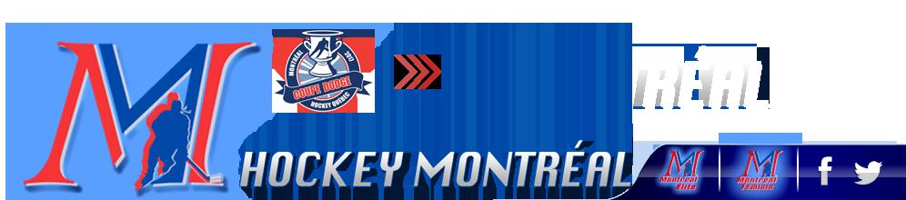Domenic zotti hockey montreal midget bb