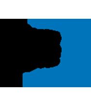Fédération de Basketball du Canada