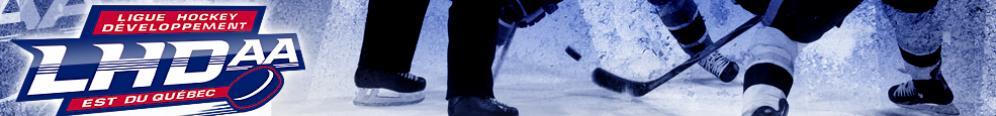 LHDAA: Ligue hockey développement AA Est du Québec